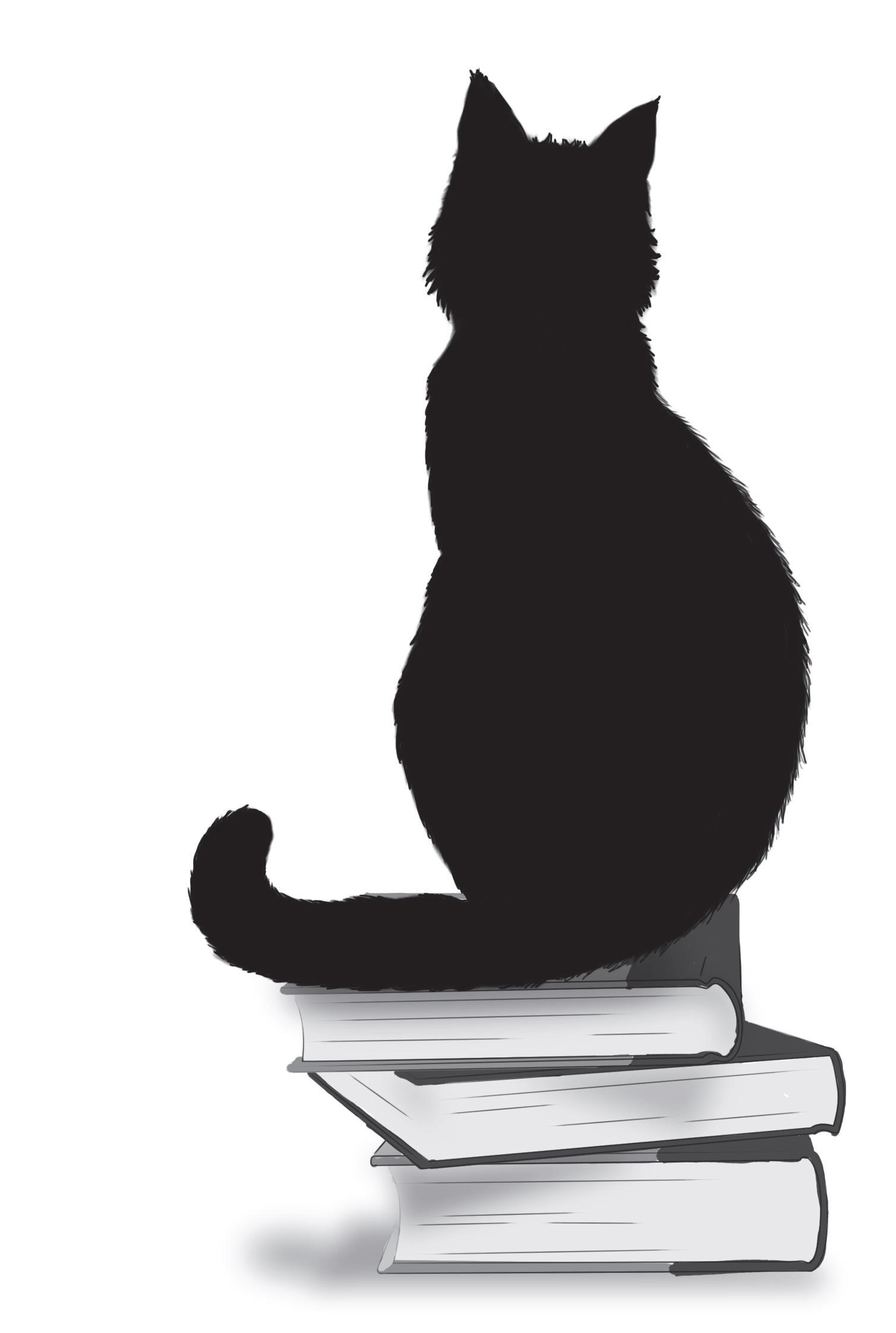 d42bed1b06266 La caricia del gato negro