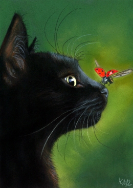 black_cat_and_ladybug_by_art_it_art-d6il9pv