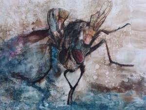 La mosca muere sola 1